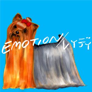 jkt_emotion.jpg